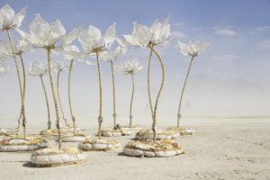 Art éphémère - Deep Playa