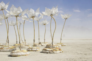 MG 8729a copie 300x200 Burning Man   2014
