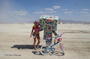MG a8726 300x196 Burning Man   2014