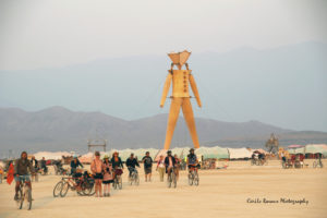 MG a8786 300x200 Burning Man   2014